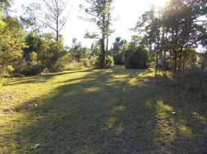 3 Acres makes it a long way across the back yard--imagine a recreational area, outdoor kitchen, etc